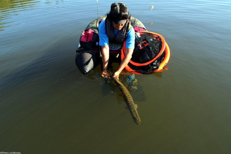 Pêche Float tube MNA